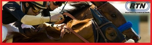 """cartoonityvuehouston say """"WATCH EXCITING LIVE-ACTION HORSERACING on RTN"""""""